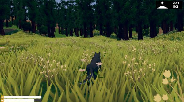 Download Wild Wolf download free