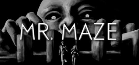 Mr. Maze Capa