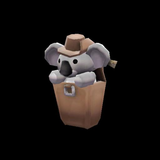 Koala Compact