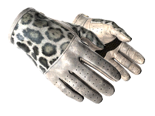 Operation Broken Fang Case Gloves