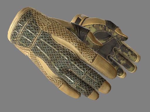 Sport Gloves Arid