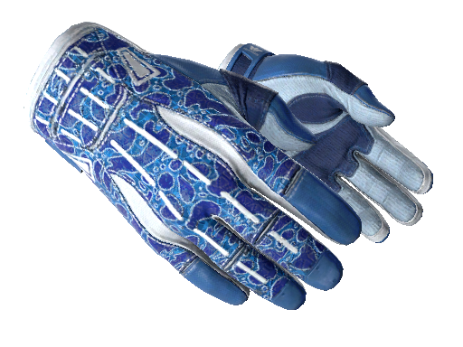 Sport Gloves Amphibious