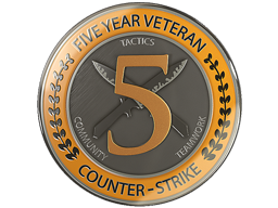 Five Year Service Coin