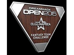 DreamHack Cluj-Napoca 2015 Fantasy Team Silver