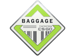 Collectible Pin - Baggage