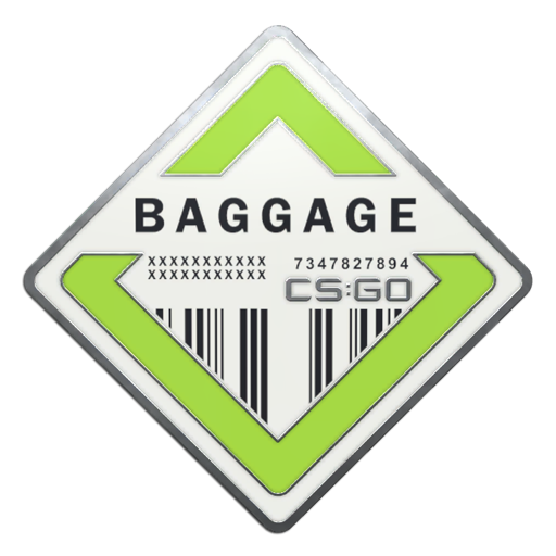 Baggage+Pin