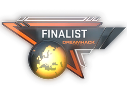 DreamHack Winter 2014 CS:GO Finalist