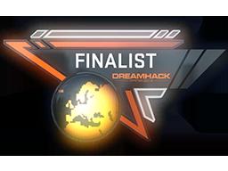 DreamHack Winter 2014 CS:GO Finalist