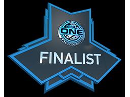 ESL One Katowice 2015 CS:GO Finalist