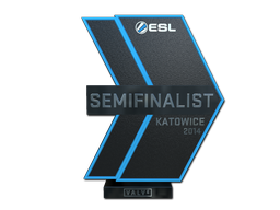 EMS One Katowice 2014 CS:GO Semifinalist