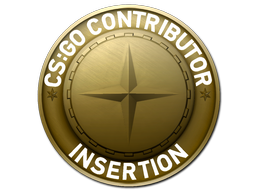 Insertion Map Coin