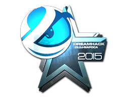 Luminosity+Gaming+%28Foil%29+%7C+Cluj-Napoca+2015