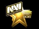 Natus Vincere (Gold) | Cluj-Napoca 2015