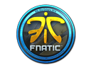 Fnatic (Foil) | Cologne 2014