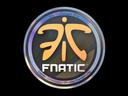 Fnatic (Holo) | Cologne 2014