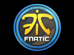 Fnatic+%7C+Cologne+2014