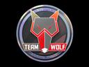wolf_holo.9c842f2a3f0071deccb96a0d680c9e408543db20.png