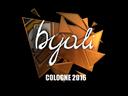 sig_byali_foil.189e0e02c8cb7d5a1b3cce9a3445aa1b737f81e0.png