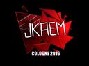 sig_jkaem_foil.6767de6223f172713ce645f11faa156d7d7c04ed.png