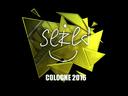 sig_seized_foil.dc9040092f6314109853b2fd52bf42905edcd0c9.png