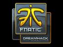 Fnatic (Foil) | DreamHack 2014