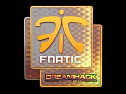 Fnatic+%28Holo%29+%7C+DreamHack+2014