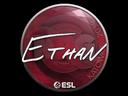 Ethan | Katowice 2019