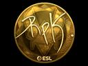 RpK (Gold) | Katowice 2019