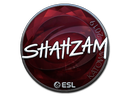 ShahZaM (Foil) | Katowice 2019