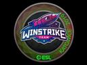 Winstrike Team (Holo) | Katowice 2019