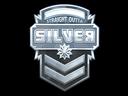 Silver (Foil)