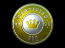 pro_foil.cfb6897bcc9fd0779983a3404448248c3d5edc65.png
