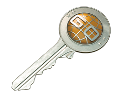 Unique CS:GO Case Key