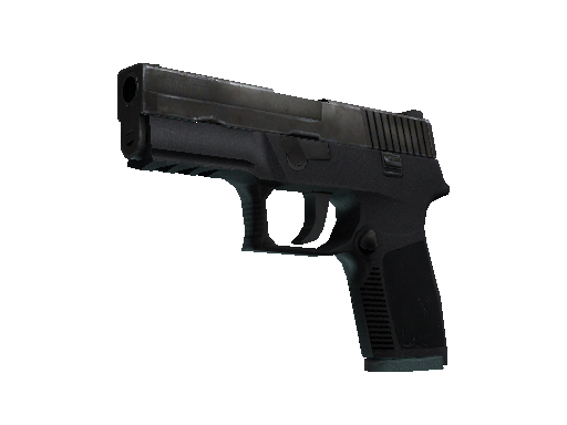 P250 | Unknown