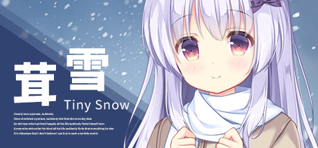 Tiny Snow