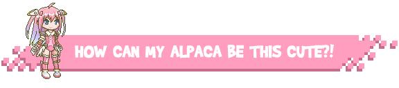 Alpacapaca Double Dash