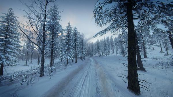 DiRT Rally 2.0 - Sweden (Rally Location) (DLC)