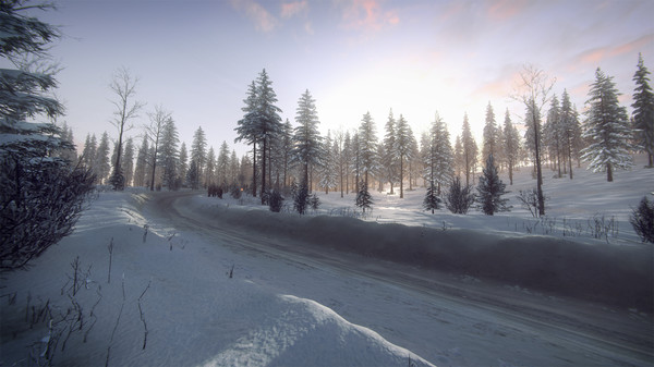 DiRT Rally 2.0 - Sweden (Rally Location) (DLC)