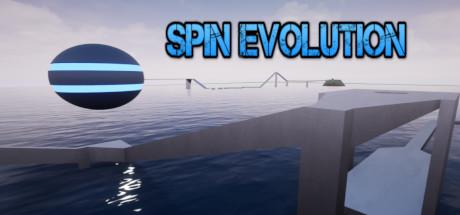 Spin Evolution