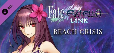 Fate/EXTELLA LINK - Beach Crisis