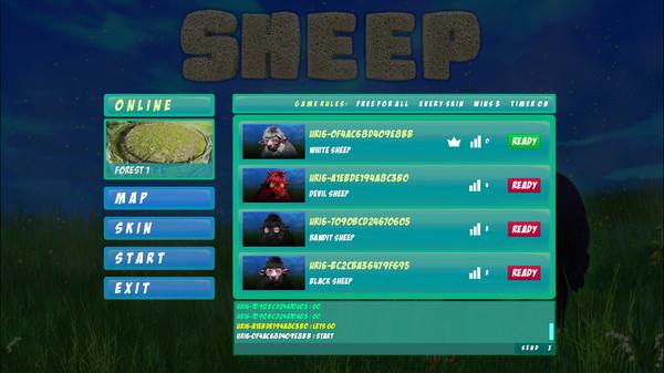 Sheep Collision