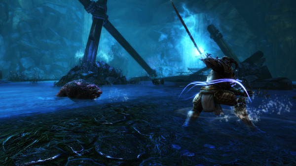 Capture d'écran n°5 du Jeu Kingdoms of Amalur: Re-Reckoning