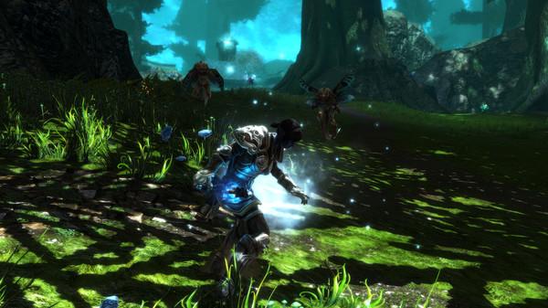 Capture d'écran n°7 du Jeu Kingdoms of Amalur: Re-Reckoning
