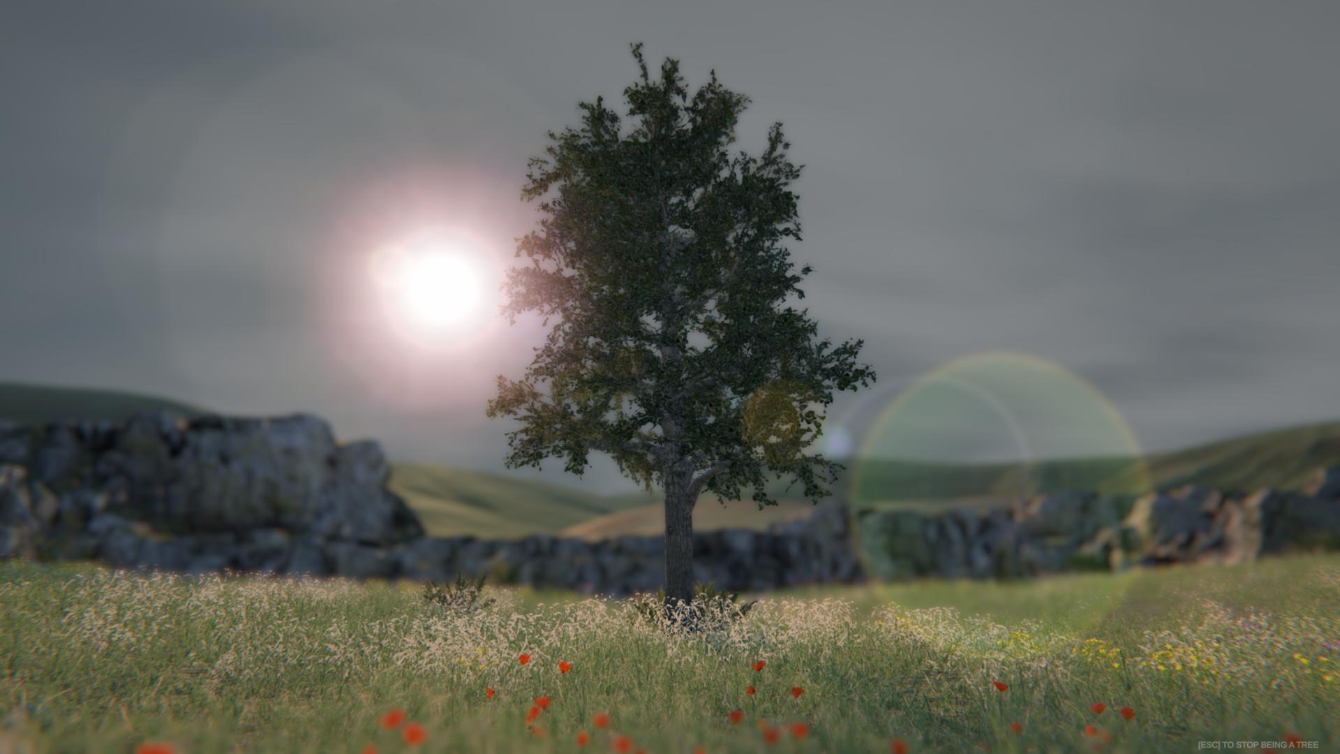 best steam bundles 2020 Save 40% on Tree Simulator 2020 on Steam