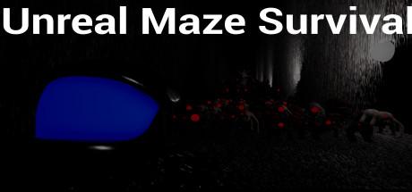 Unreal Maze Survival