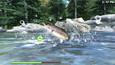 Reel Fishing: Road Trip Adventure picture7