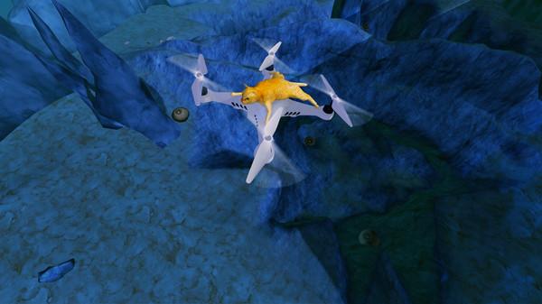 Risky Wings - 'Dizzy Kitten' Character (DLC)