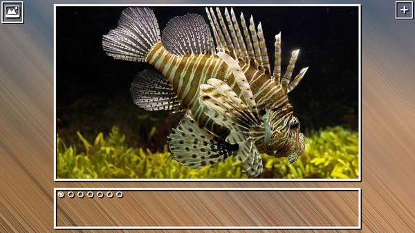 Super Jigsaw Puzzle: Generations - Sealife Puzzles (DLC)