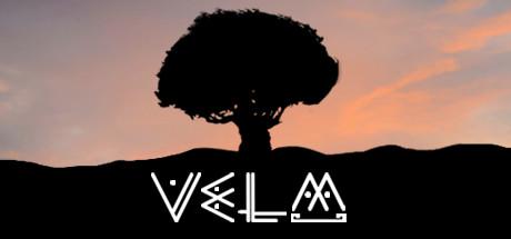 Купить VeLM