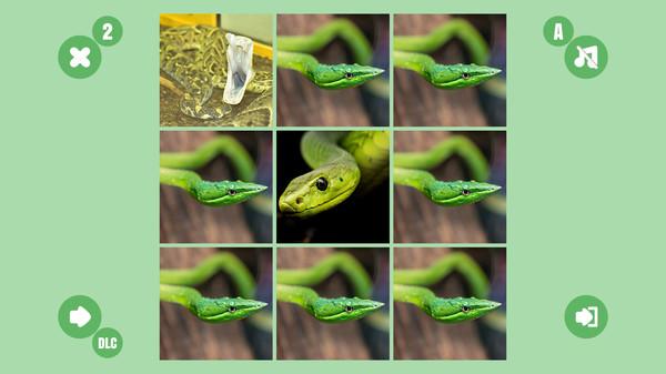 Snake couple 6 (DLC)